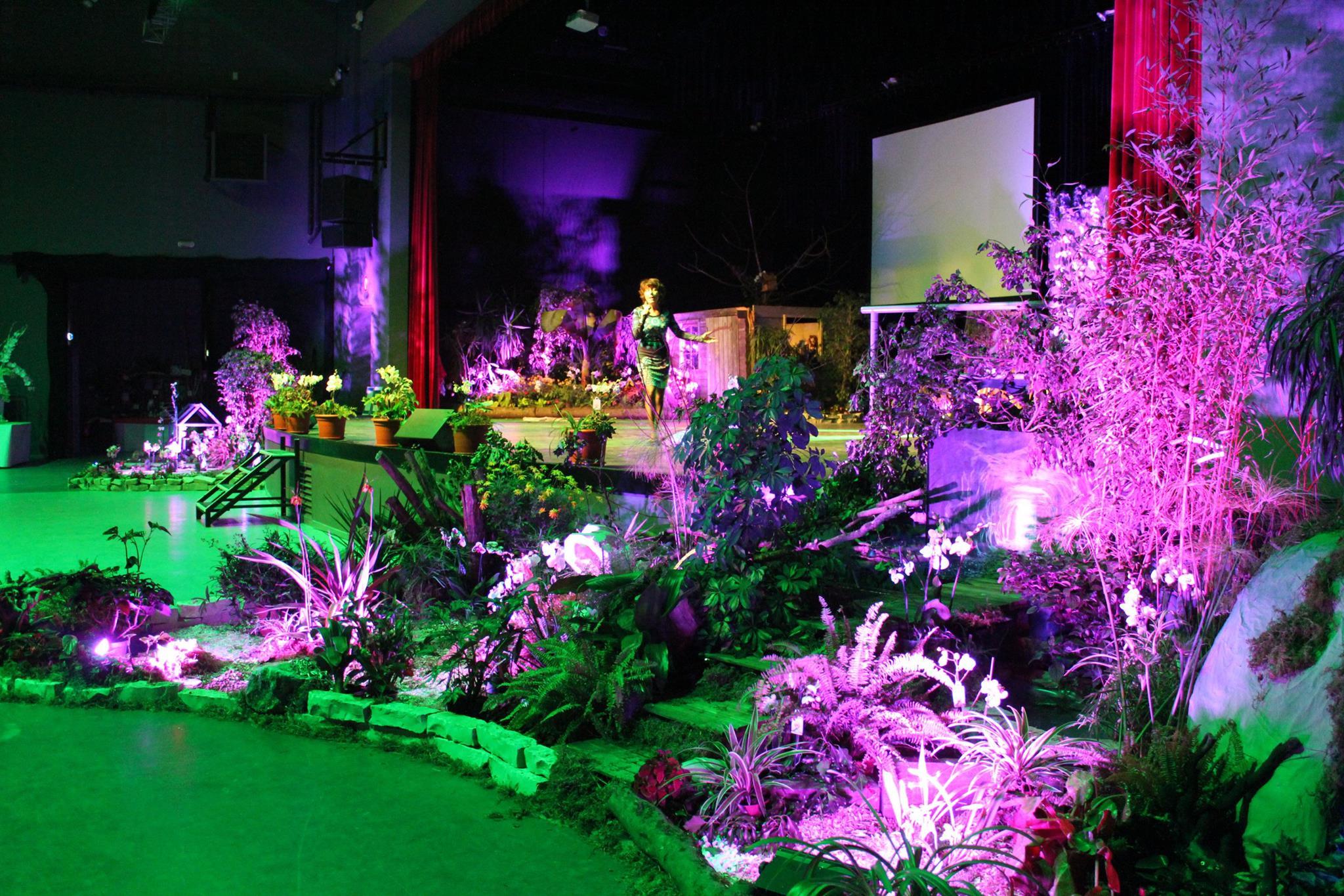 Orchidées en scène Intégral Belley